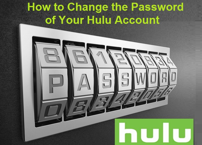 Password of Your Hulu Account