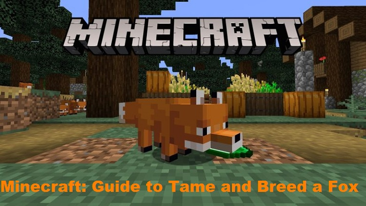 Minecraft Guide to Tame and Breed a Fox